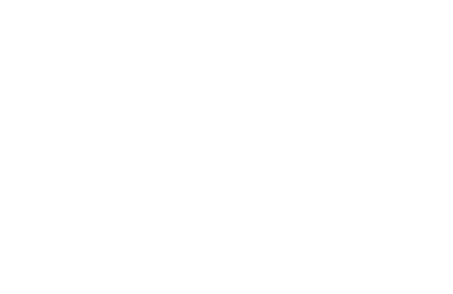Dream Wedding Entertainment